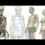 How to Draw People | Human  Figure Drawing