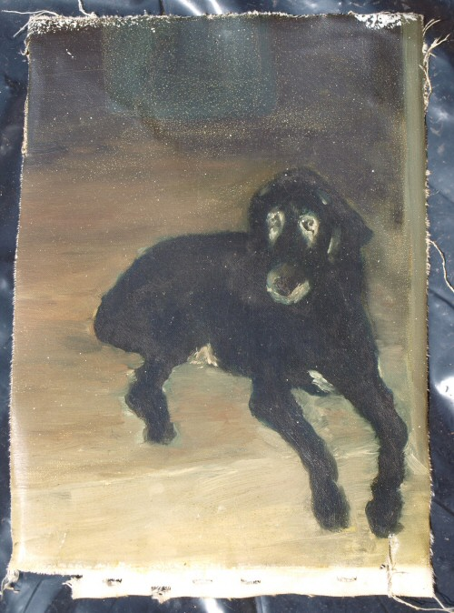 old dog Abstract Dog Painting