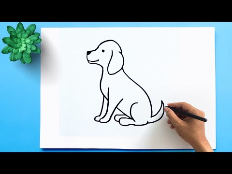 How to Draw a Dog Step by Step ??