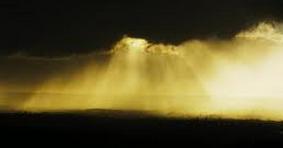 Rain Or Shine Poem by Charles Bukowski