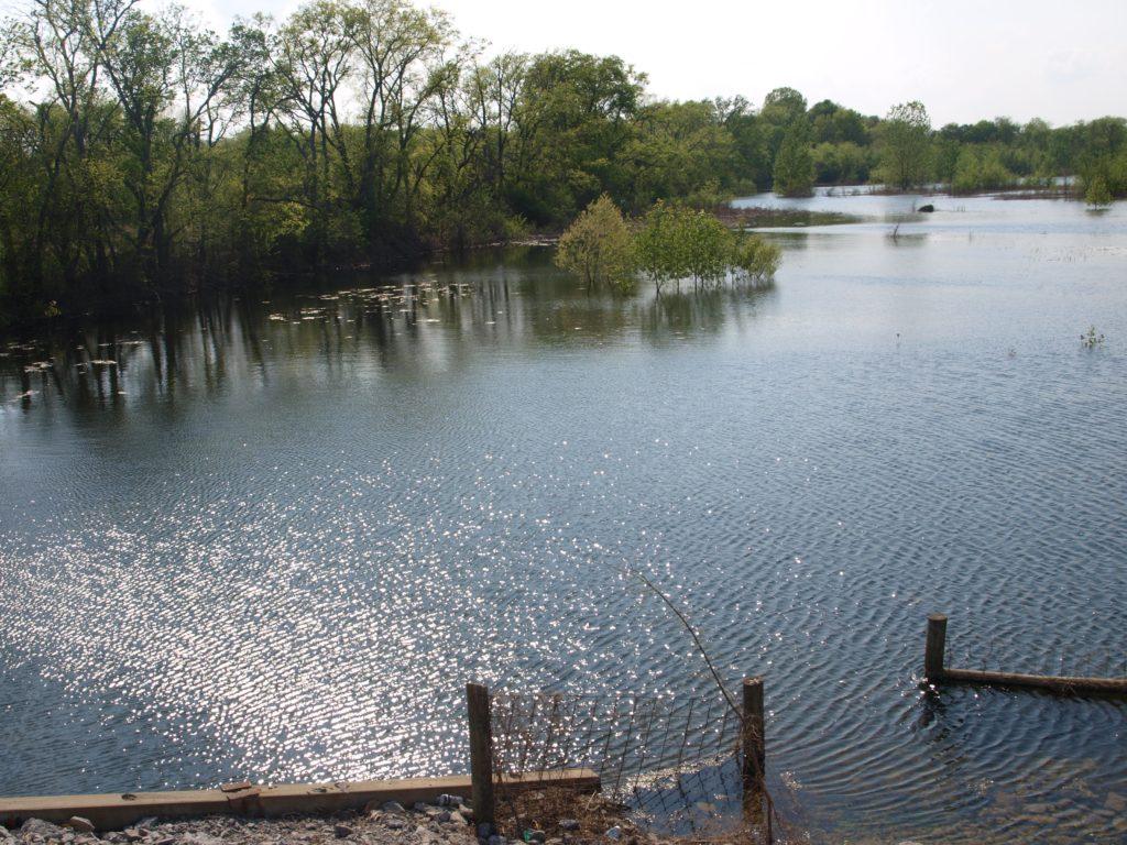 pretty water scene