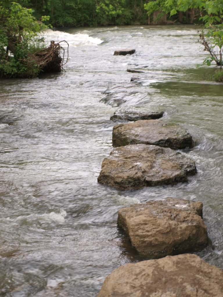 rocks_across_stream_pic