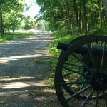 cannon beside road Stones River