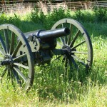 beautiful cannon picture cannon in weeds