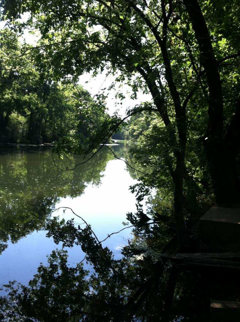 river_pic