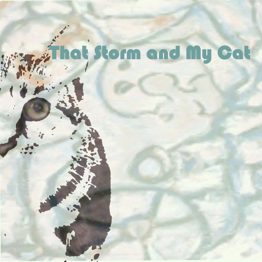 that storm and my cat