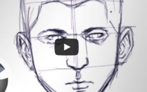 How to Draw a Face in Proportion 300x188 How to Draw a Face in Proportion