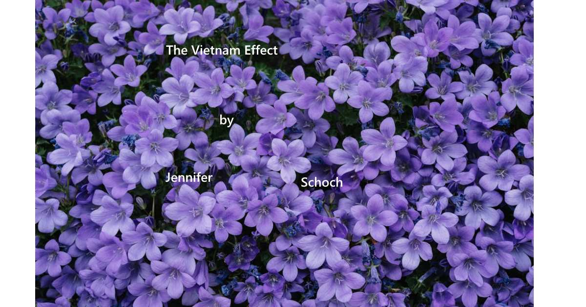 Vietnam Effect Vietnam poem